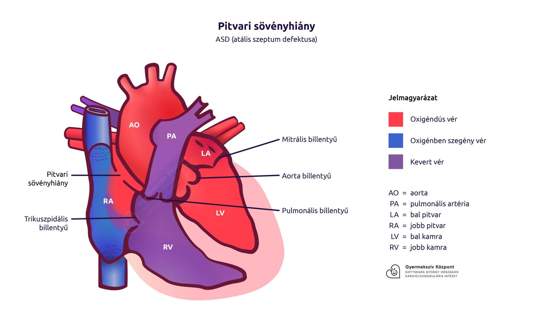 magas vérnyomás kezeléssel foglalkozó blog kombinációk a magas vérnyomás kezelésére