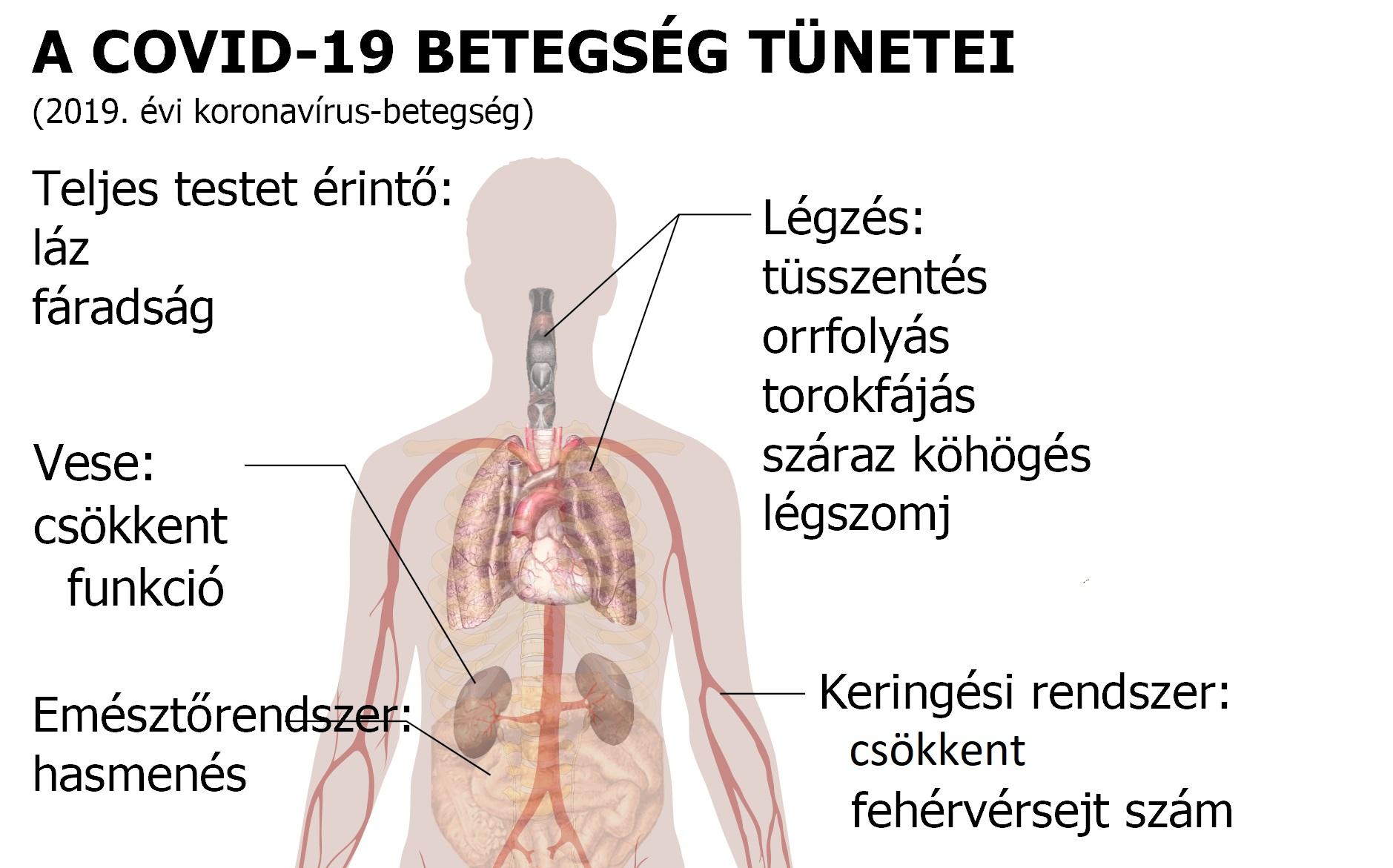 súlycsökkenés és magas vérnyomás tünetei