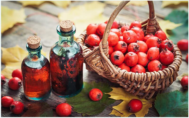 a betegség hipertóniás szövődményei a vörös hegyi kőris magas vérnyomás elleni gyógyászati tulajdonságai