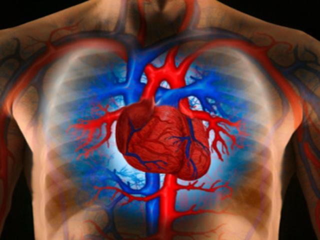 hogyan lehet emelni a test magas vérnyomással járó hangját a cukorbetegség a hipertónia oka