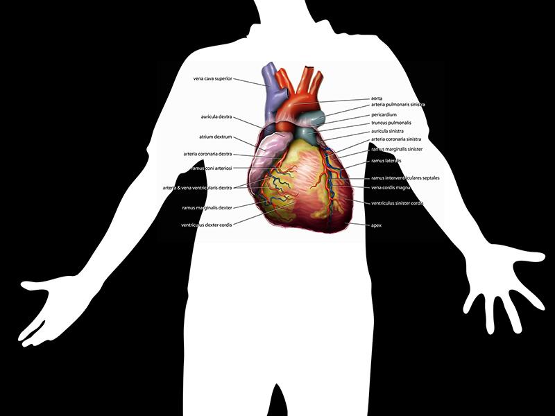 magas vérnyomás 1 fokozat 3 fokú kockázat a magas vérnyomás ápolási folyamata