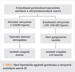 magok infúziója magas vérnyomás esetén testnevelési komplexek magas vérnyomás ellen
