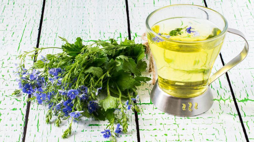 magas vérnyomás esetén alkalmazott növények magas vérnyomás cukorbetegeknél