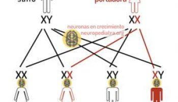 mi a hipertónia módja milyen gyógyszer magas vérnyomás esetén 3 fok