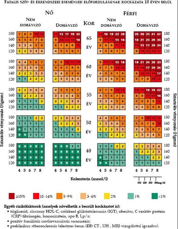 típusú magas vérnyomás mit jelent a 2 fokú magas vérnyomás diagnózisa