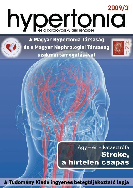 a hipertónia kialakulásának kockázatával küzdő csoport