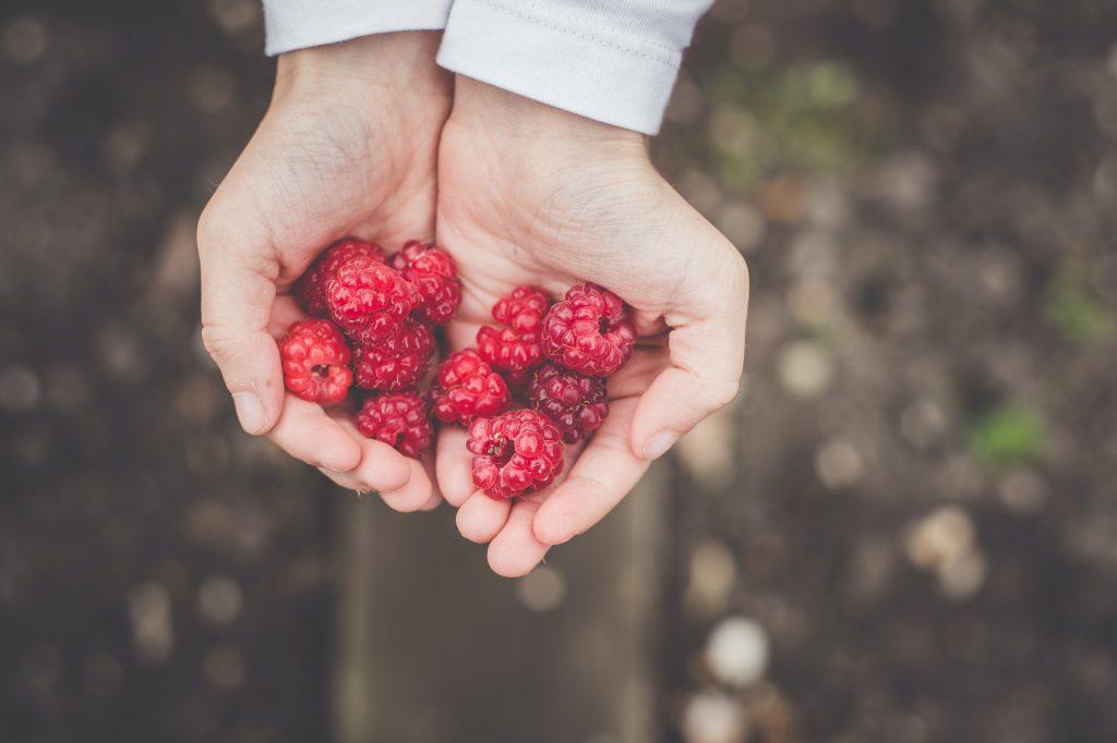 alma magas vérnyomás ellen Az olvasók receptjei a magas vérnyomás ellen