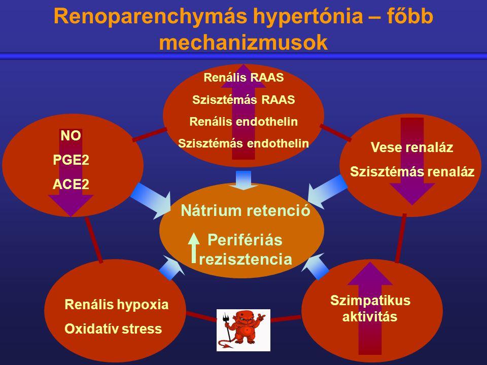 hipertónia perifériás rezisztencia cukorbetegségben szenvedő magas vérnyomás elleni gyógyszerek