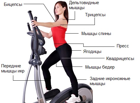 hogyan kell gyakorolni elliptikus edzőn hipertónia esetén a magas vérnyomás vizsgálati terve