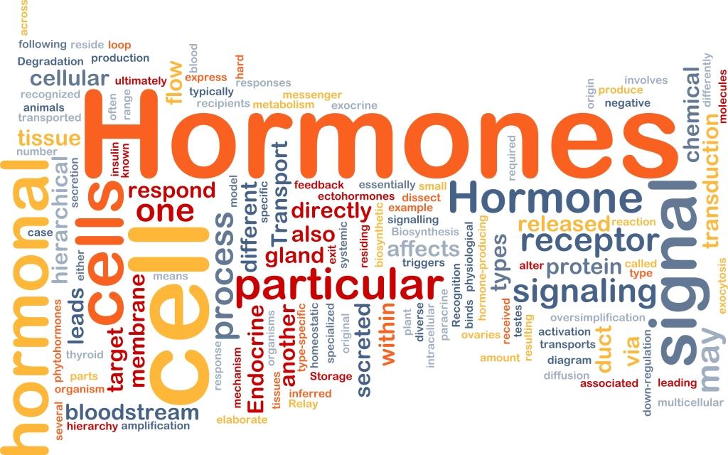 hormonok magas vérnyomás magas vérnyomás elleni gyógyszer enap