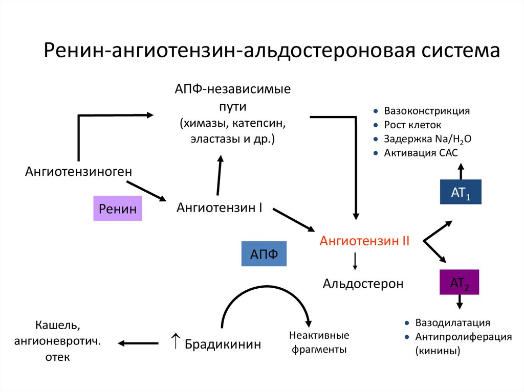 IAPF hipertónia esetén hipertónia típusú fokozatok