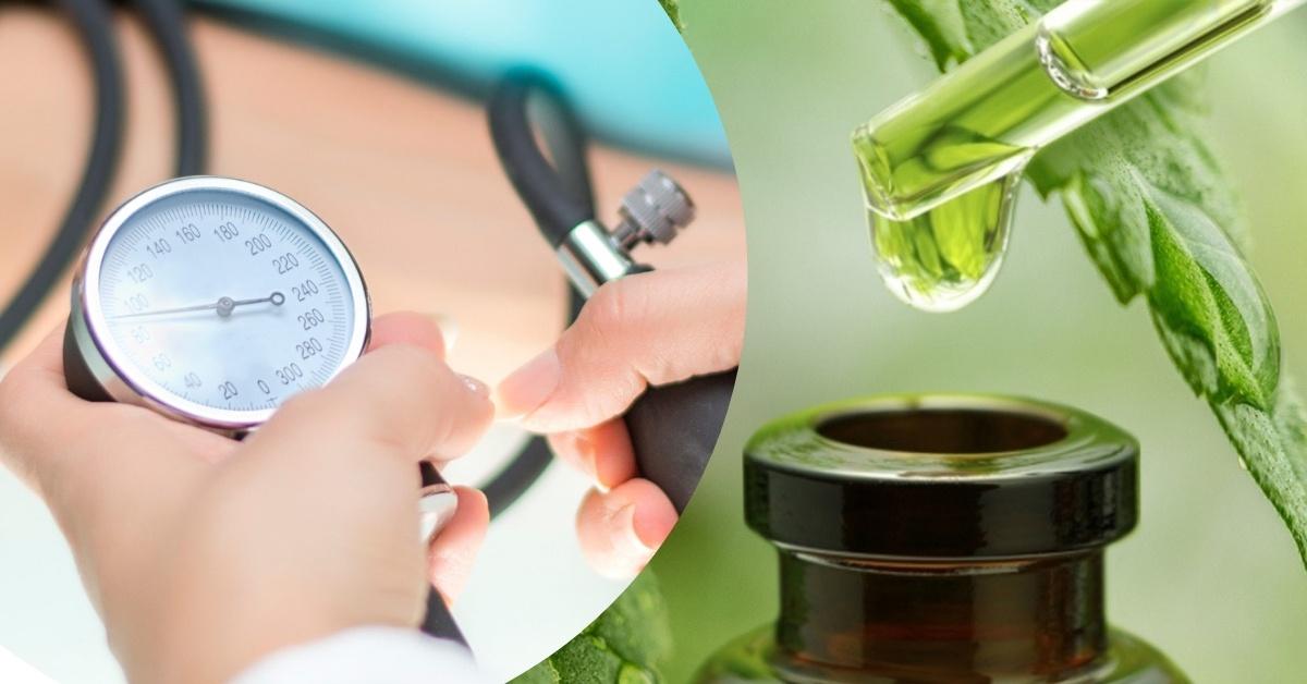 fagyöngy magas vérnyomás kezelés magas vérnyomás terápiája időseknél