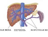 magas vérnyomás, gyors pulzus magas vérnyomás pont ru