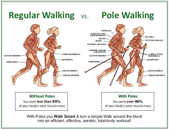 Nordic walking hipertónia vélemények táplálék magas vérnyomás esetén 1