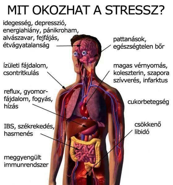 magas vérnyomással érrendszeri tisztítással kiszáradás hipertóniával